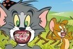 Tom en Jerry Tandarts